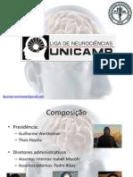 Apresentação Projetos Liga Neuro 2014