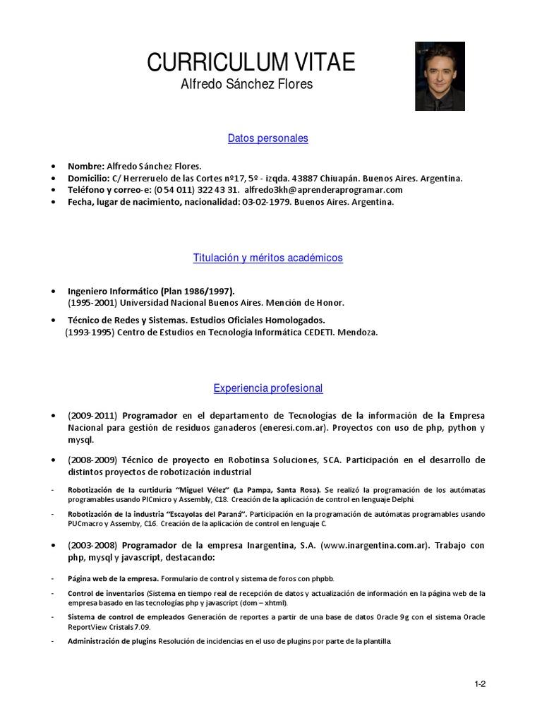 Magnífico Curriculum Vitae Netos Del Programador Motivo - Ejemplo De ...