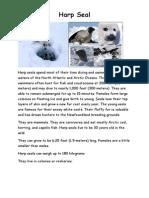 arctic animal fact files