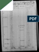 1860 Slave Schedule Effingham County