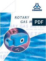 COMMON CGR Rotative Meters