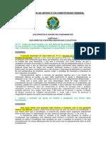 3 COMENTÁRIOS AO ARTIGO 5º DA CONSTITUIÇÃO FEDERAL