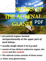 Disorders of the Adrenal Glands, MaleFemale Gonads & Pineal Gland