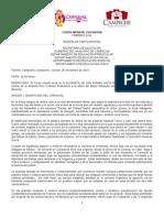 RESEÑA CORSO INFANTIL CARNAVAL CAMPECHE 2014