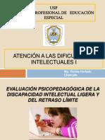 EVALUACIÓN PSICOPEDAGÓGICA DE LA CAPACIDA LEVE Y LIMITROFE