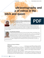 Ovarian Ultrasonography and Follow of Estrus in the Bitch and Queen