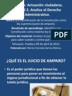 2.1.2.QUÉ ES EL JUICIO DE AMPARO