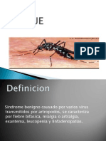 Presentacion Final Dengue