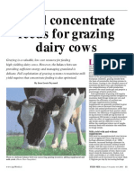 Ideal Concentrate Feeds for Grazing Dairy Cows