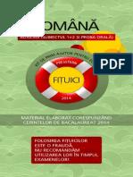 Presstern Fituica Romana 2 Auxiliar Subiectul 1 2