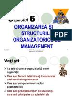 management- organizarea si structurile organizatorice