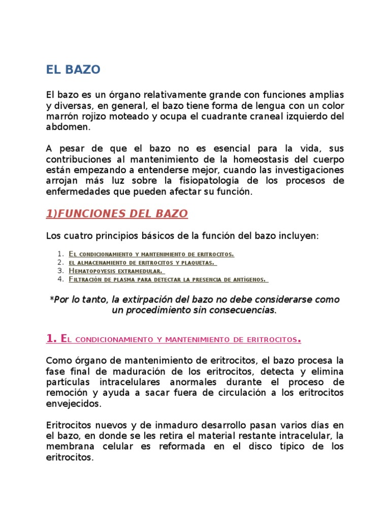 68437643 El Bazo Funciones