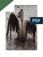 Causas y Consecuencias de La Contaminacion Del Agua