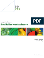 10 Day Cleanse Energise