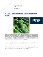 H2 Bio - Shedding Light On Photosynthesis FAQs