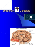 emisferele_cerebrale