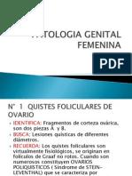 PATOLOGÍA GENITAL FEMENINA