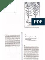 Nature's Body; Gender in the making of modern science - Londa Schiebinger