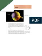 Cómo funciona la Fibra Óptica