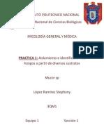 Micologia Practica 1