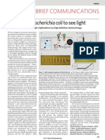 E.coli See Light Artikel ( Zur Vorlesung Lipps)