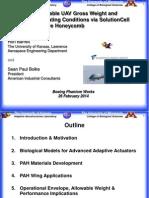 SolutionCell; Barrett Boike Boeing-Mar2014