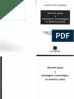 Derecho Penal y Paradigma Criminologico en America Latina