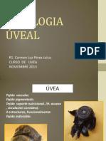 FISIOLOGIA UVEAL 2013