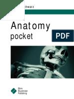 Anatomy Pcket