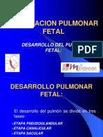 Maduracion Pulmonar Fetal