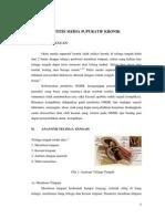 Otitis Media Supuratif Kronik Fix2