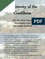Biodiversity of the Cordilleras