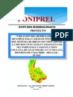ESTUDIO HIDROLÓGICO REPRESAMIENTO PALCCAMAYO