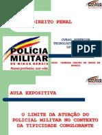 Roteiro Penal