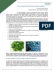Los cultivos celulares y sus aplicaciones II (cultivos de células vegetales). ArgenBio - Cultivos celulares II Euge