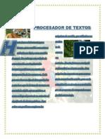 PROCESADOR DE TEXTOS.pdf