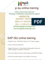 SAP ISU Online Training Usa