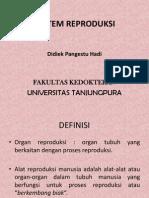 Sistem Reproduksi Pria Dan Wanita