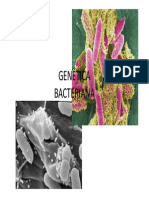 geneticabacteriana_9091