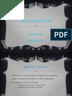 Merger & Amalgamtion Presentation