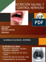 Secrcecion Salival y Control Nervioso