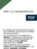 ARNy La Transcripcion