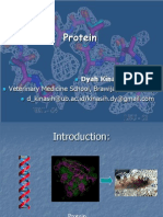 Protein (Structures and Functions)