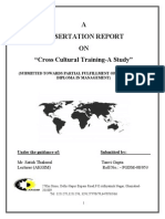 Dissertation on Cross Cultural Training