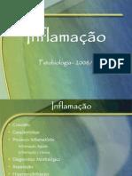 PB04_inflama_1_2008