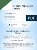 11-12_sueruecue_schmerz.pdf