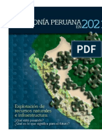 Amazonia Peruana Em 2021 1