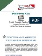 Induccion Senavirtual