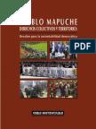 Libro Pueblo Mapuche