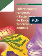 Enfermedades Fungosas y Bacterianas de Tuberculos y Raices Andinos